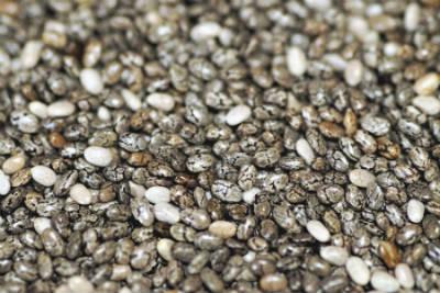 comprare semi di chia
