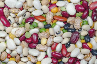 Alimenti ricchi di ferro di origine vegetale