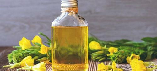 Proprieta dell olio di enotera