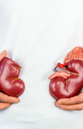 Urea bassa nel sangue