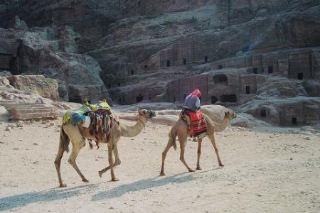 Come arrivare alla citta di Petra