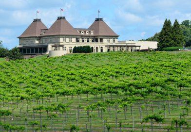 Georgia paese del vino