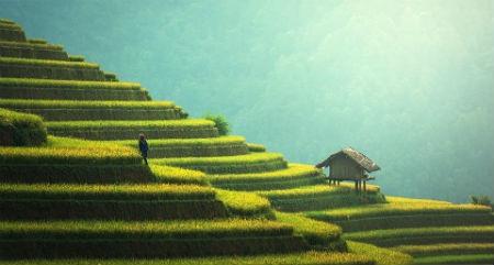 Il clima a Bali